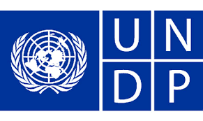 UN SDG Action Campaign Youth Advocate (Internship)