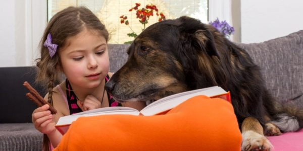 How Dogs are Helping Children Read and Bring Peace to the Classroom